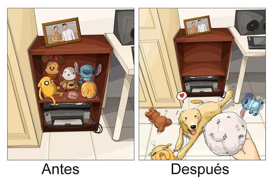 vida antes y despues tener perro 4