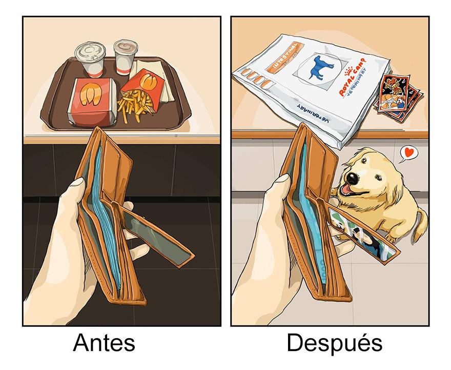 vida antes y despues tener perro 8