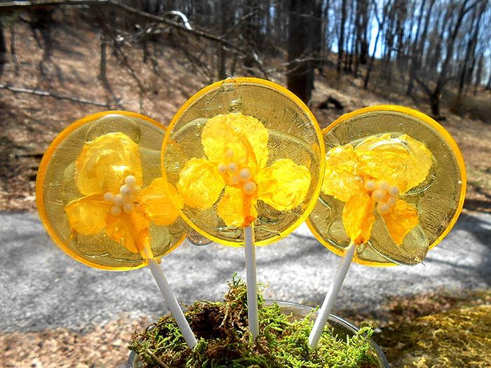 petalos de flores en piruletas 10