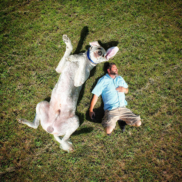photoshop perro gigante 11