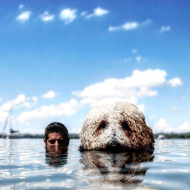 photoshop perro gigante 16