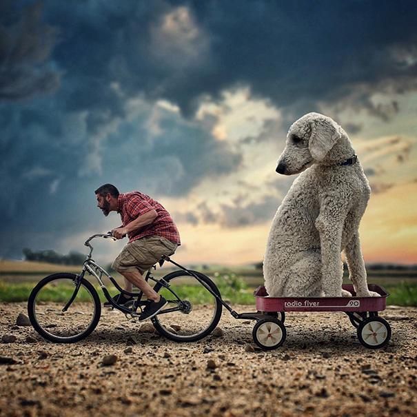 photoshop perro gigante 2