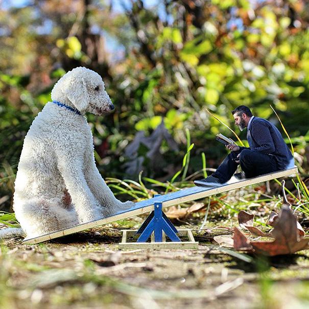 photoshop perro gigante 5