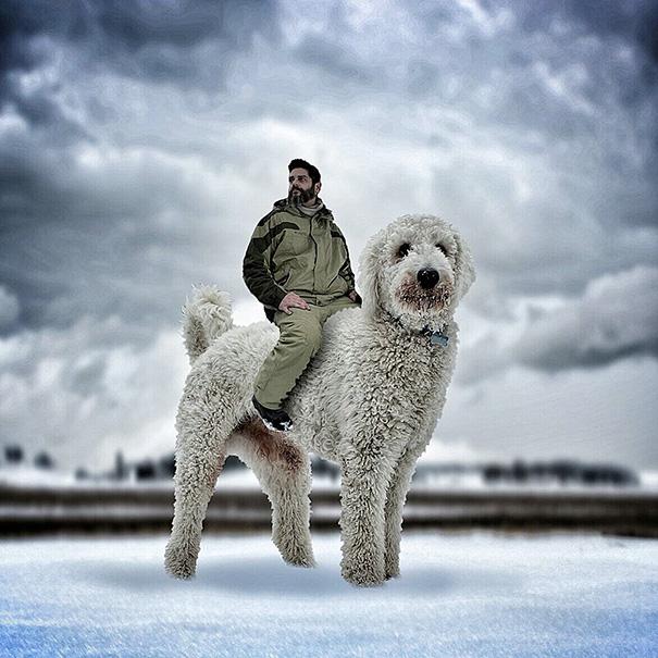 photoshop perro gigante 6