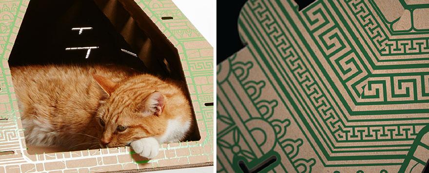 casas de carton gatos monumentos 13