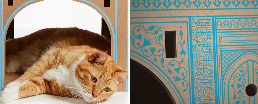 casas de carton gatos monumentos 2
