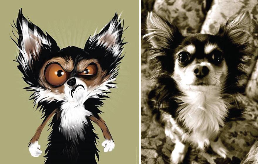 dibujos retratos mascotas 14