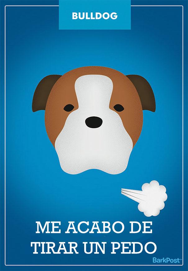 esloganes perros 11