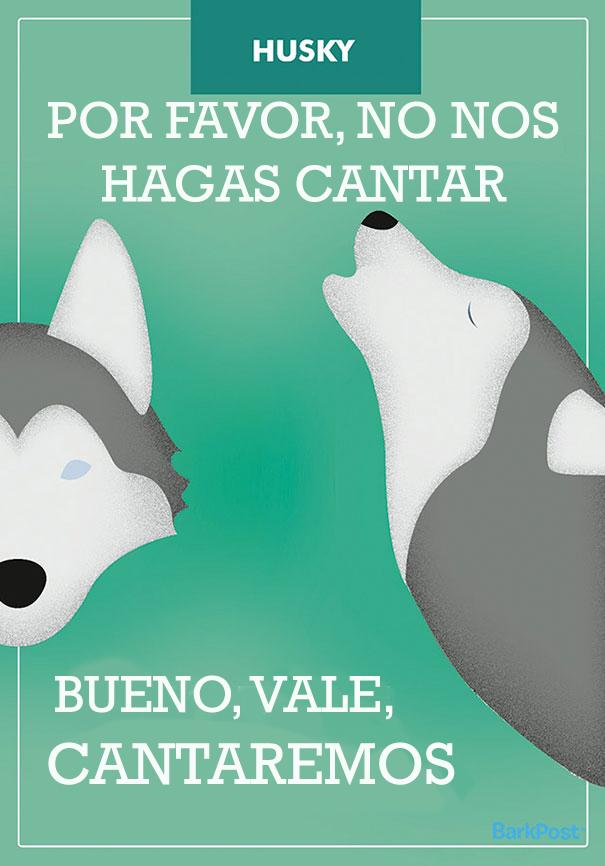 esloganes perros 2