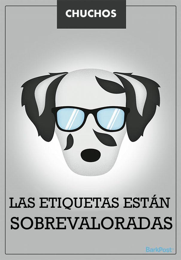 esloganes perros 3