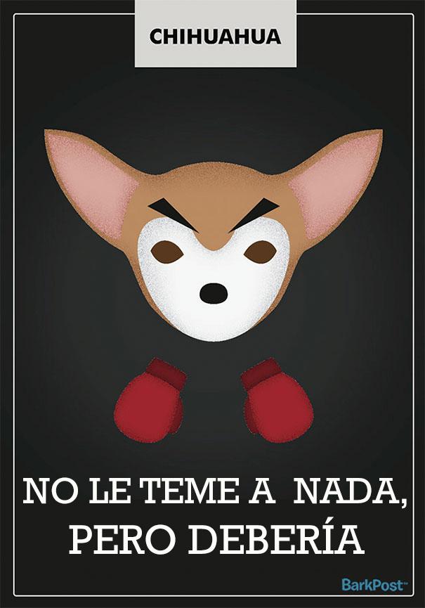 esloganes perros 7