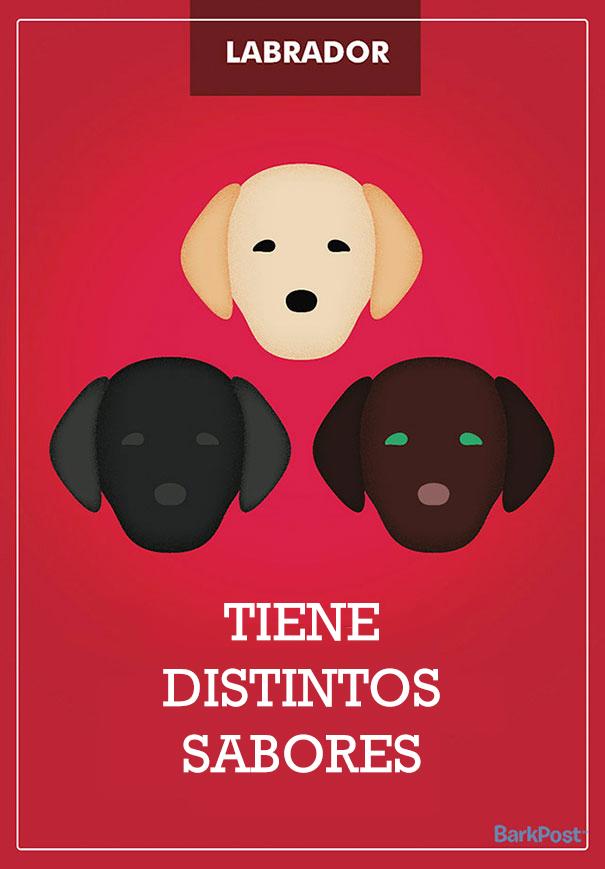 esloganes perros 8