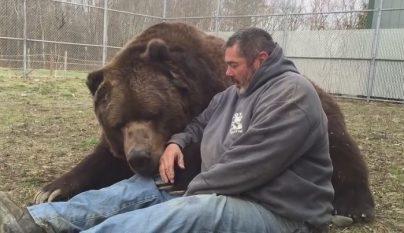 hombre junto a un oso