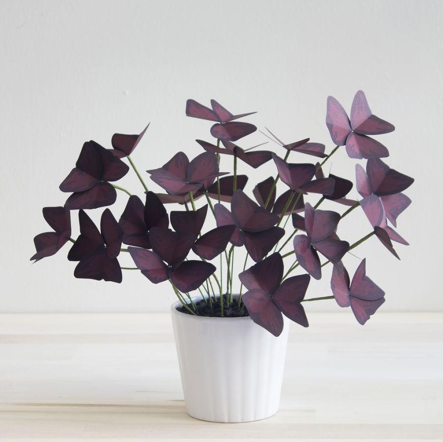 plantas de papel 11