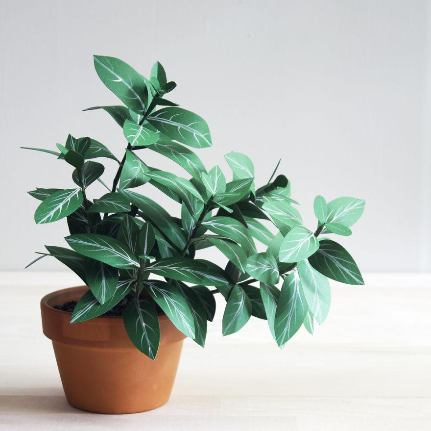 plantas de papel 12