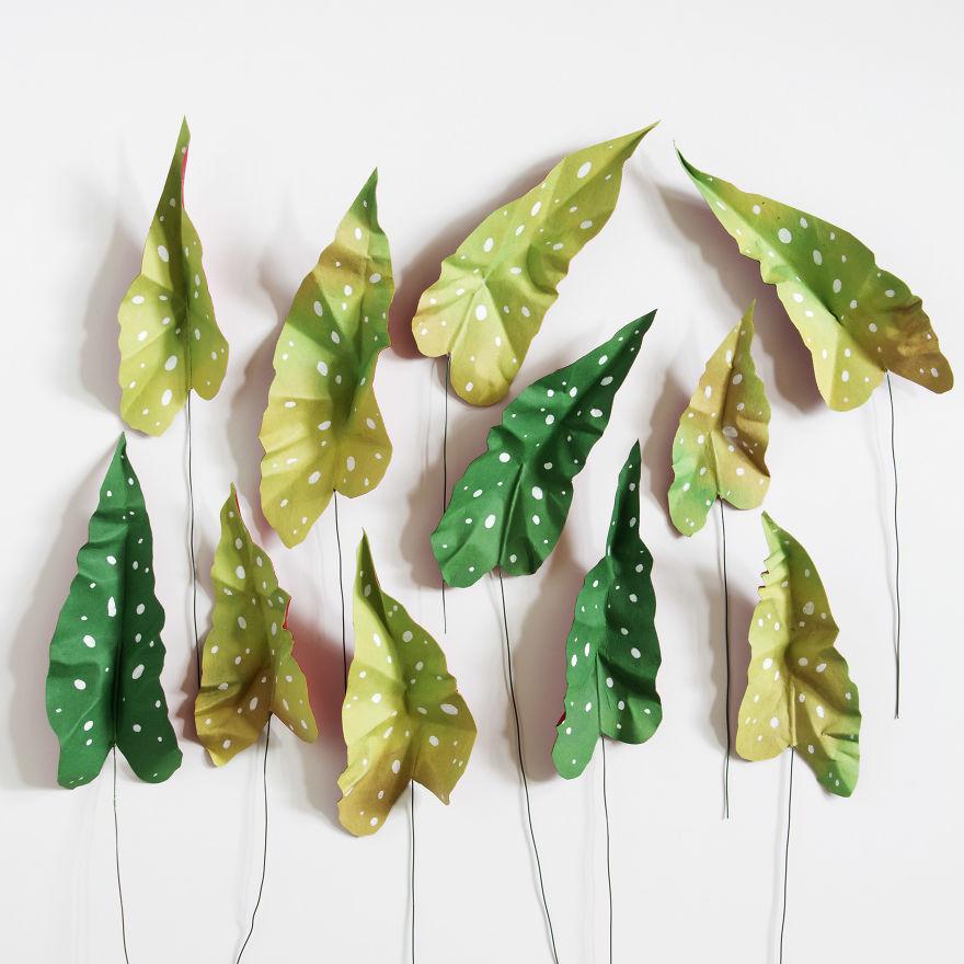 plantas de papel 3