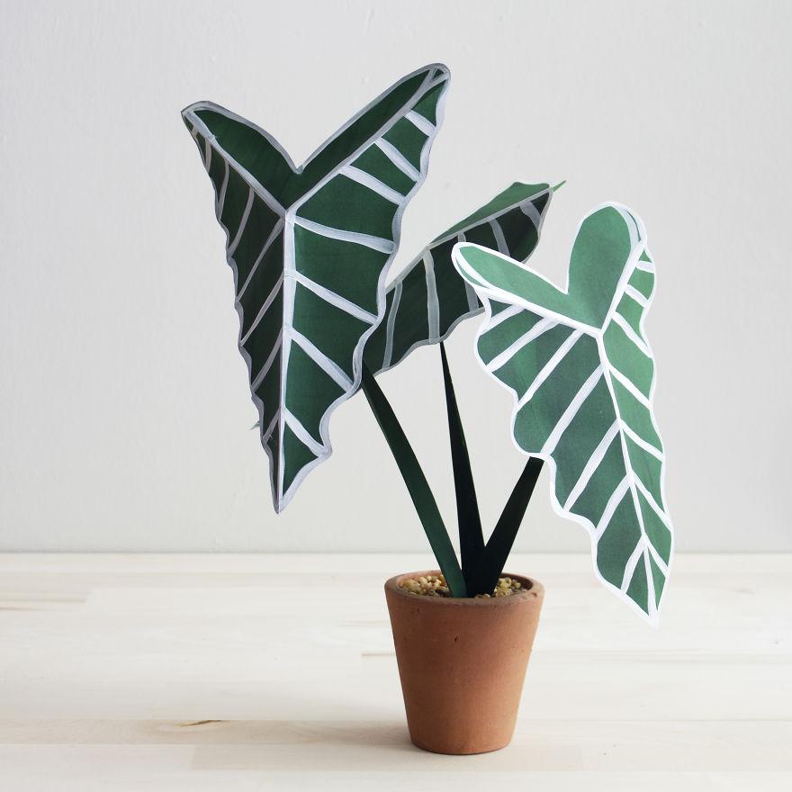 plantas de papel 4