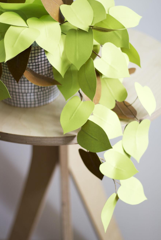 plantas de papel 6