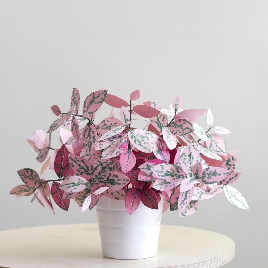 plantas de papel 7