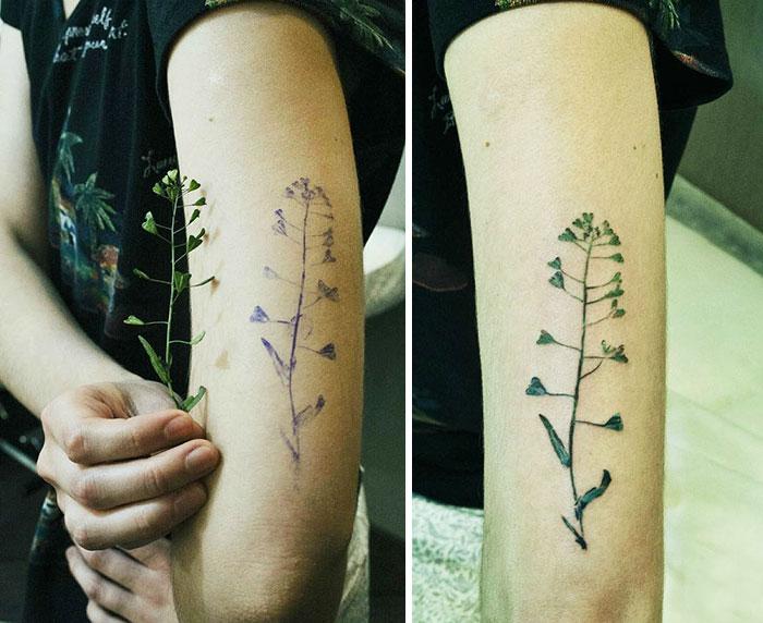 tatuajes botanicos 6