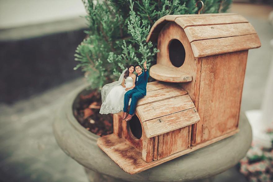 foto bodas miniatura 10