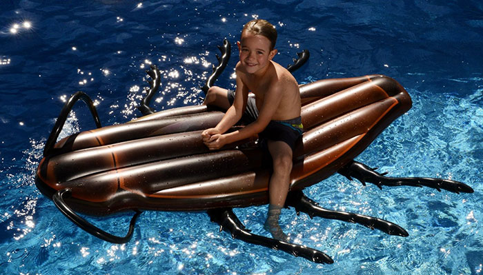 Gigantic Cockroach Raft 4