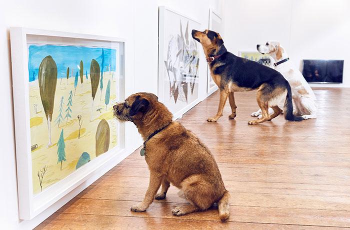 arte para perros 1