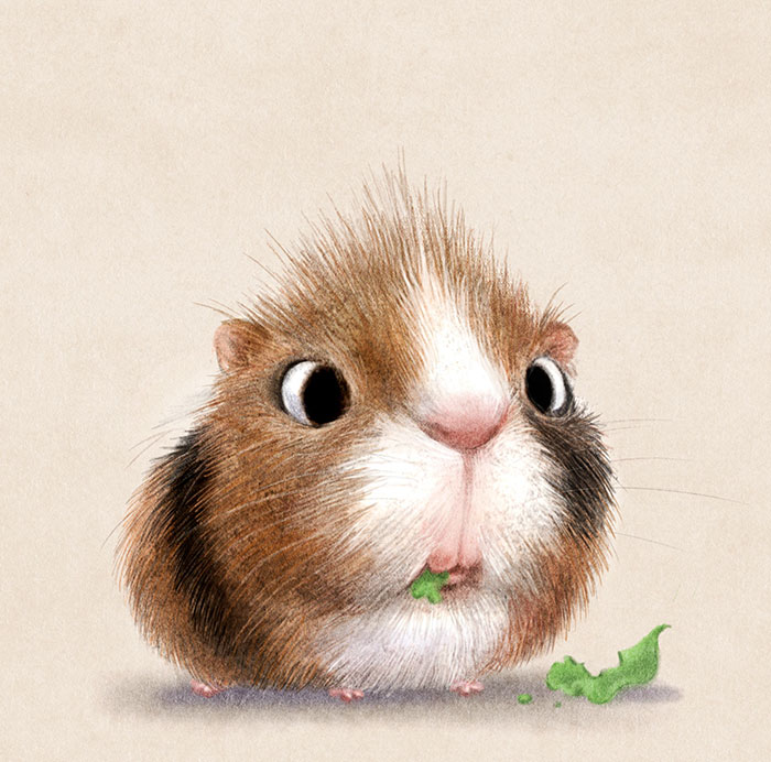 ilustraciones-graciosas-animales-2