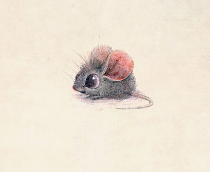 ilustraciones-graciosas-animales-3
