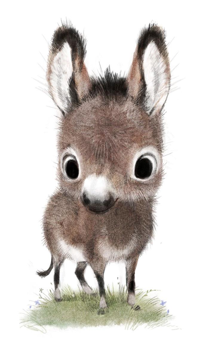 ilustraciones-graciosas-animales-7