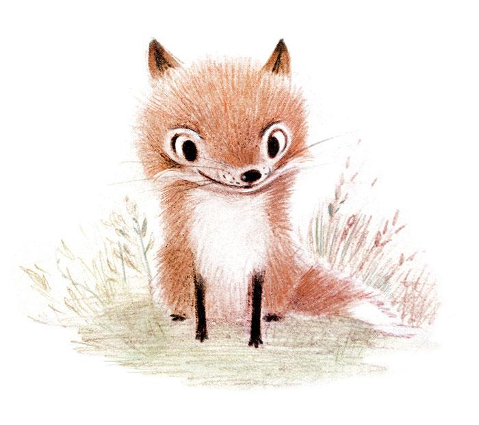 ilustraciones-graciosas-animales-8