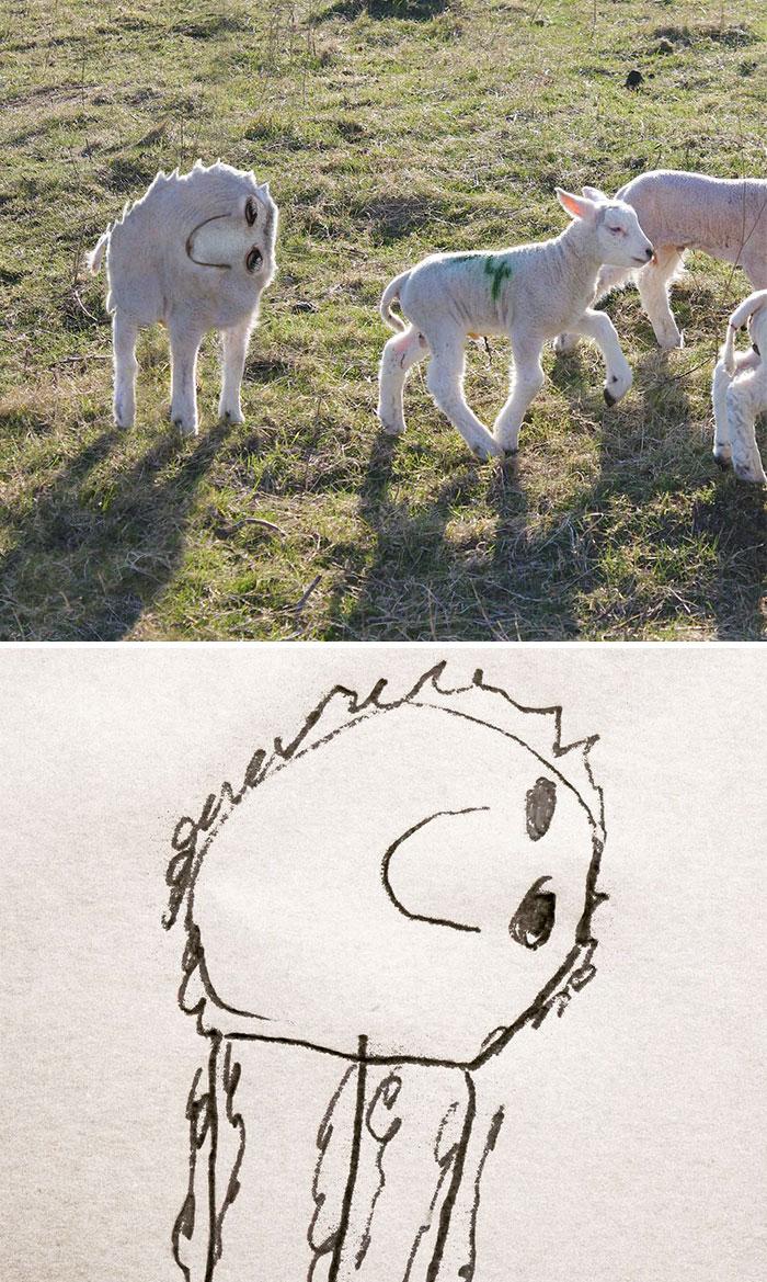 dibujos-en-la-vida-real-12