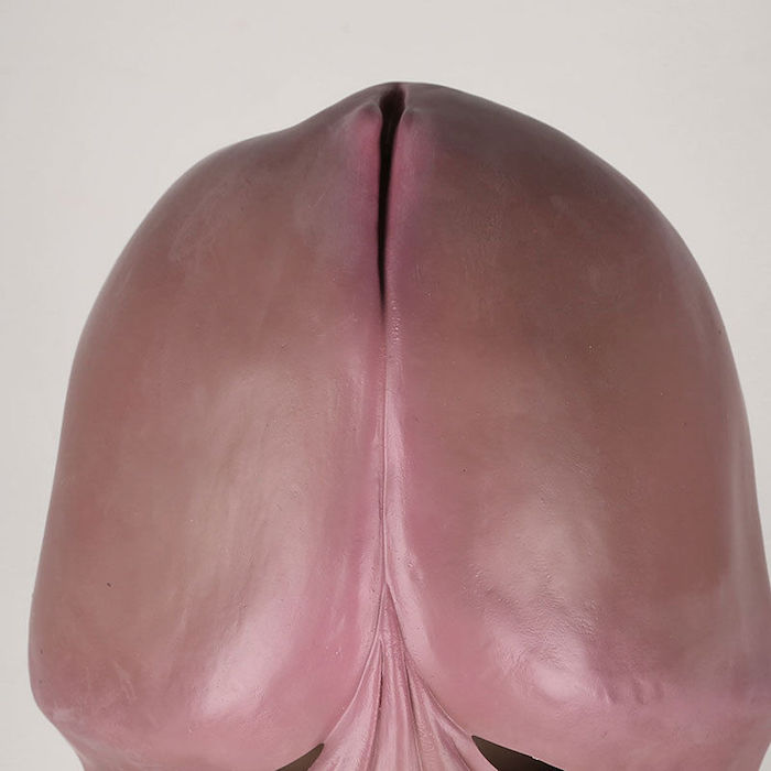 mascara-pene-halloween-6