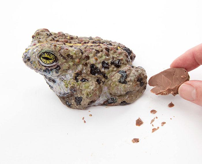 chocolate-que-no-te-atreveras-a-probar-9