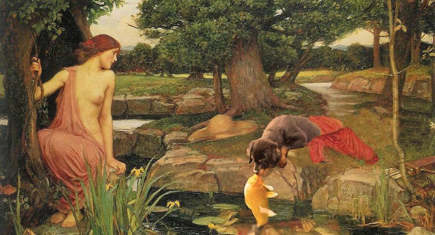 perro-pez-photoshop-14