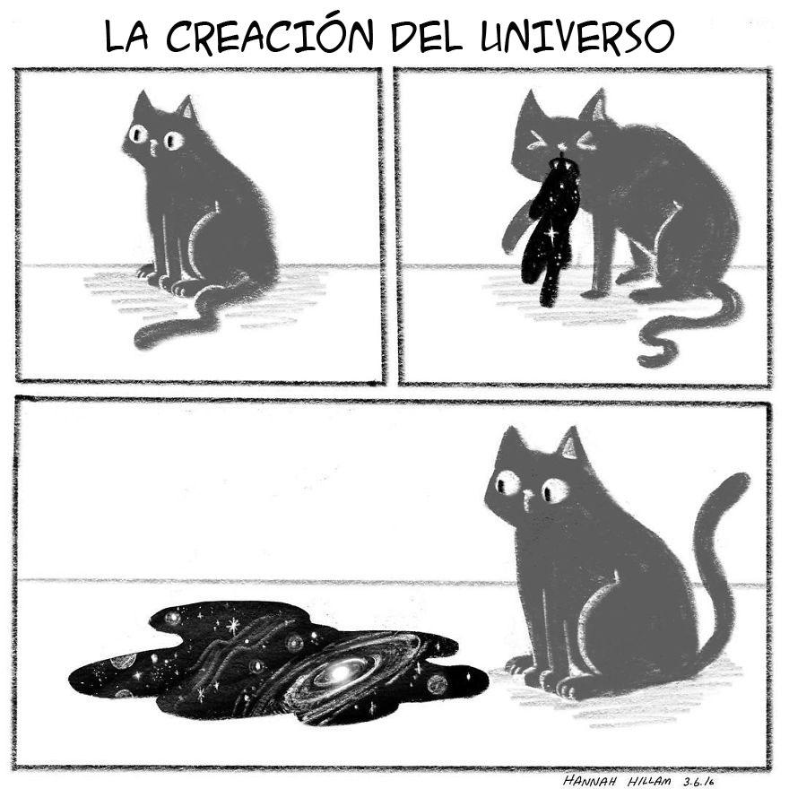 vida-con-un-gato-3