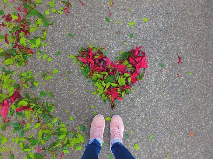 hojas-caidas-con-mucho-arte
