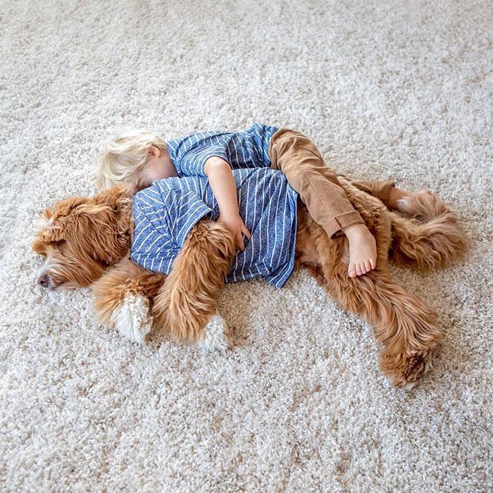 perro-nino-11