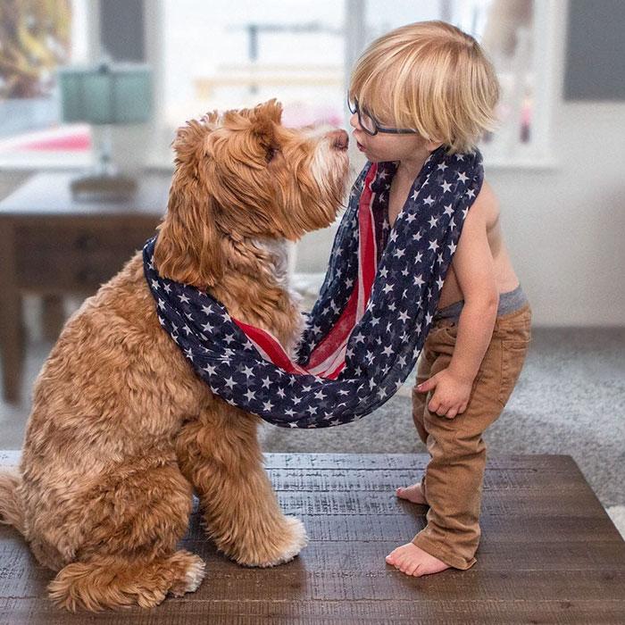 perro-nino-9