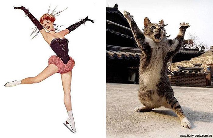 gatos-pin-up