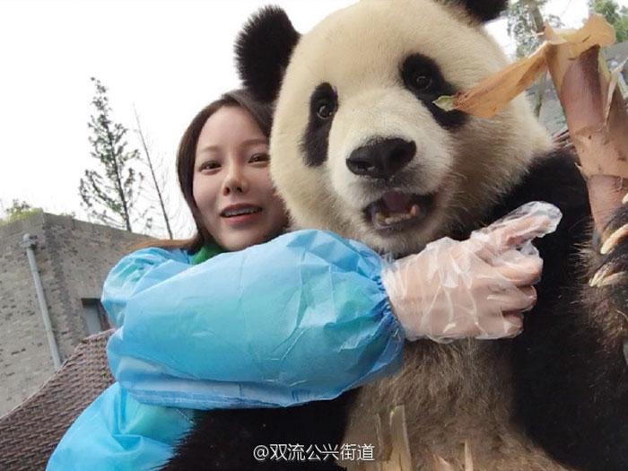 oso-panda-selfies