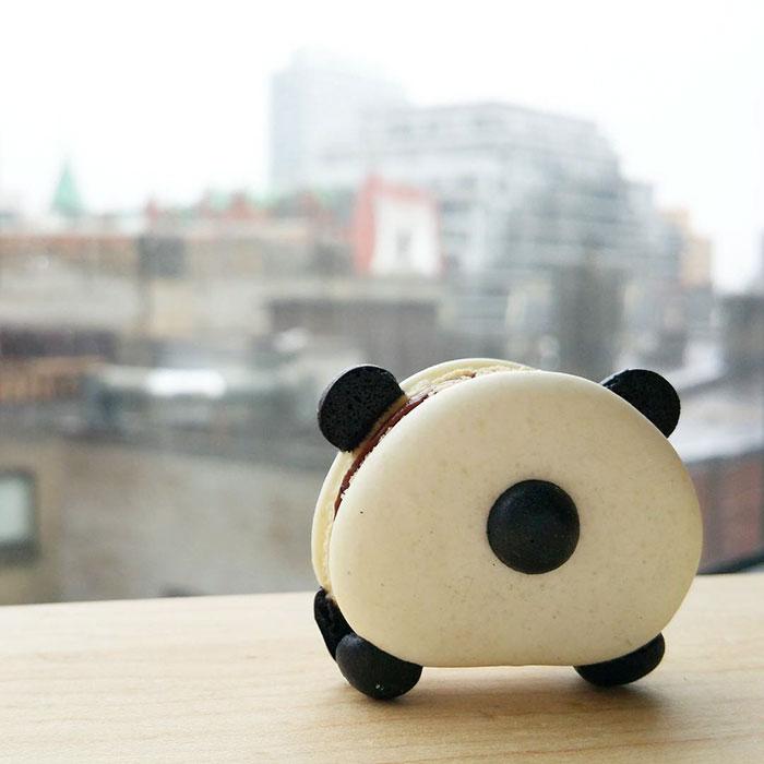macarons-panda