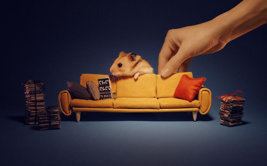 ciudad-miniatura-hamsters