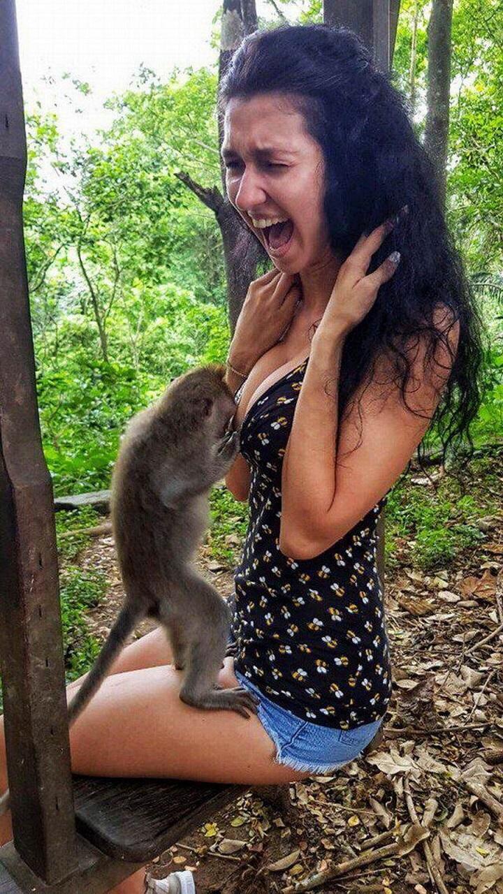 mono-escote