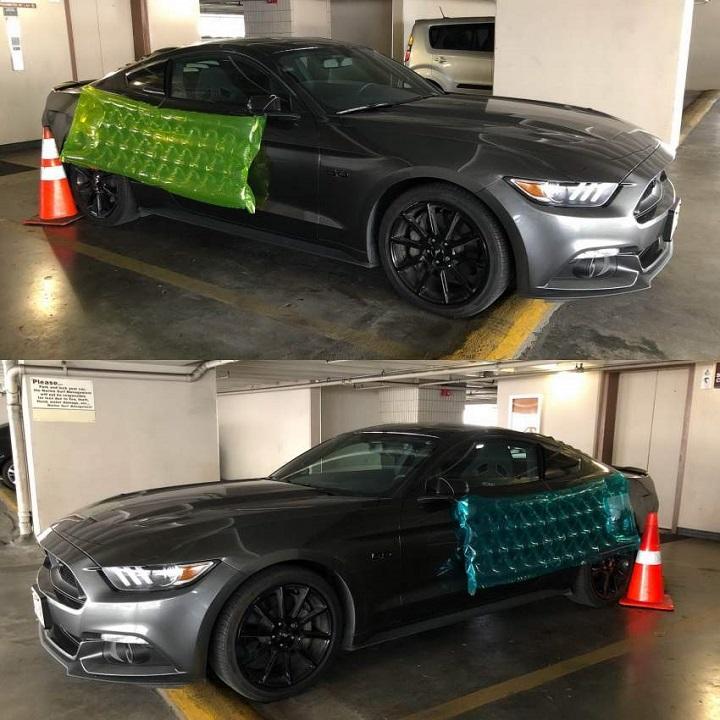 proteccion-Mustang