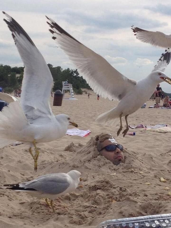 cuidado-con-la-broma-de-enterrarse-en-la-playa