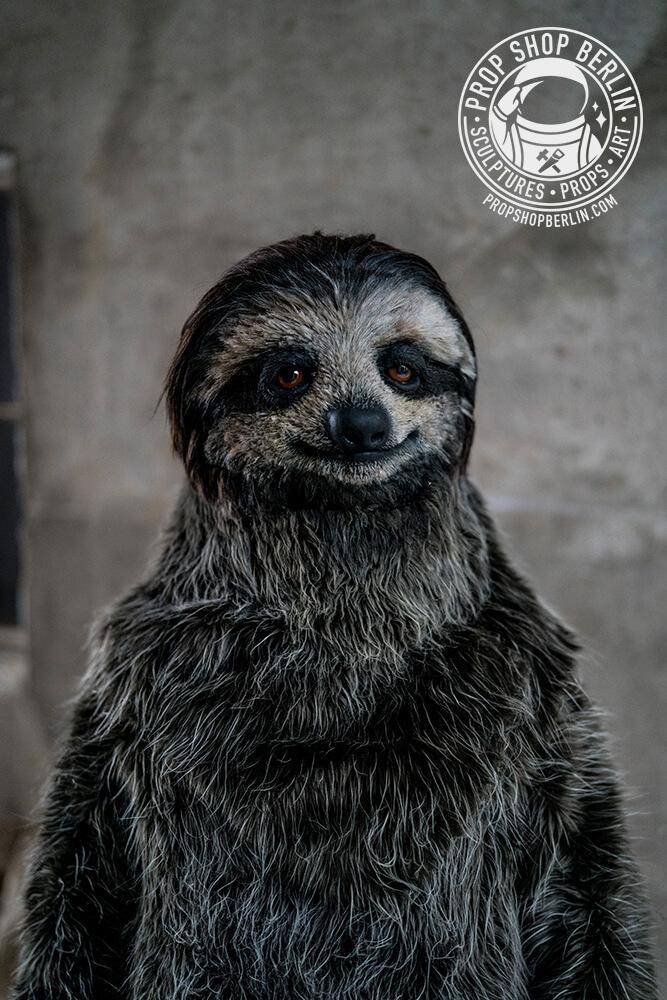 El mejor disfraz de oso perezoso de la historia 2da1c38536b