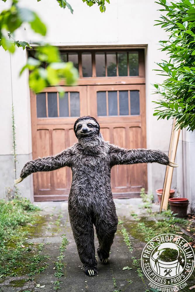 oso-perezoso