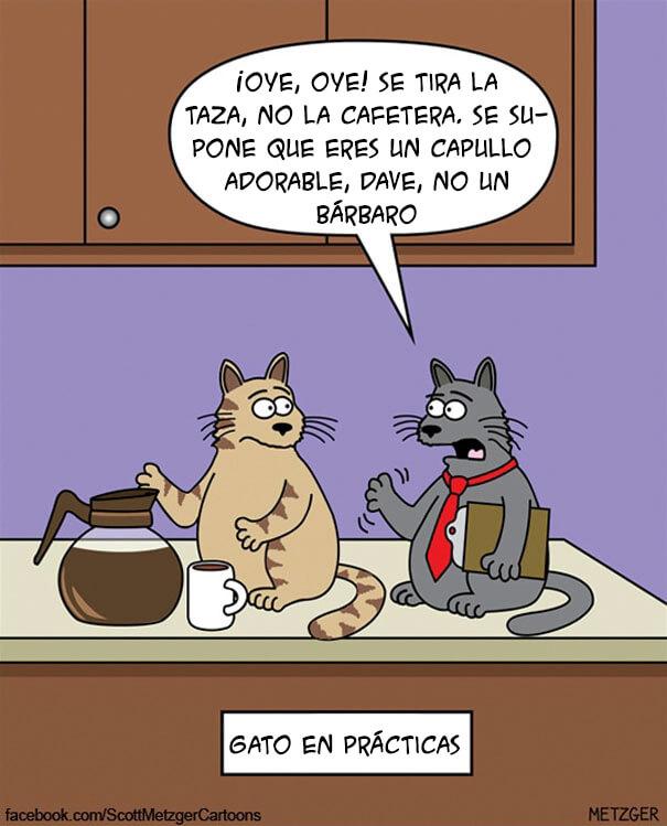 vinetas-gatos