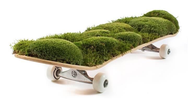 skate-musgo